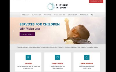 New Future In Sight Website; Highlights & Accessibility Features